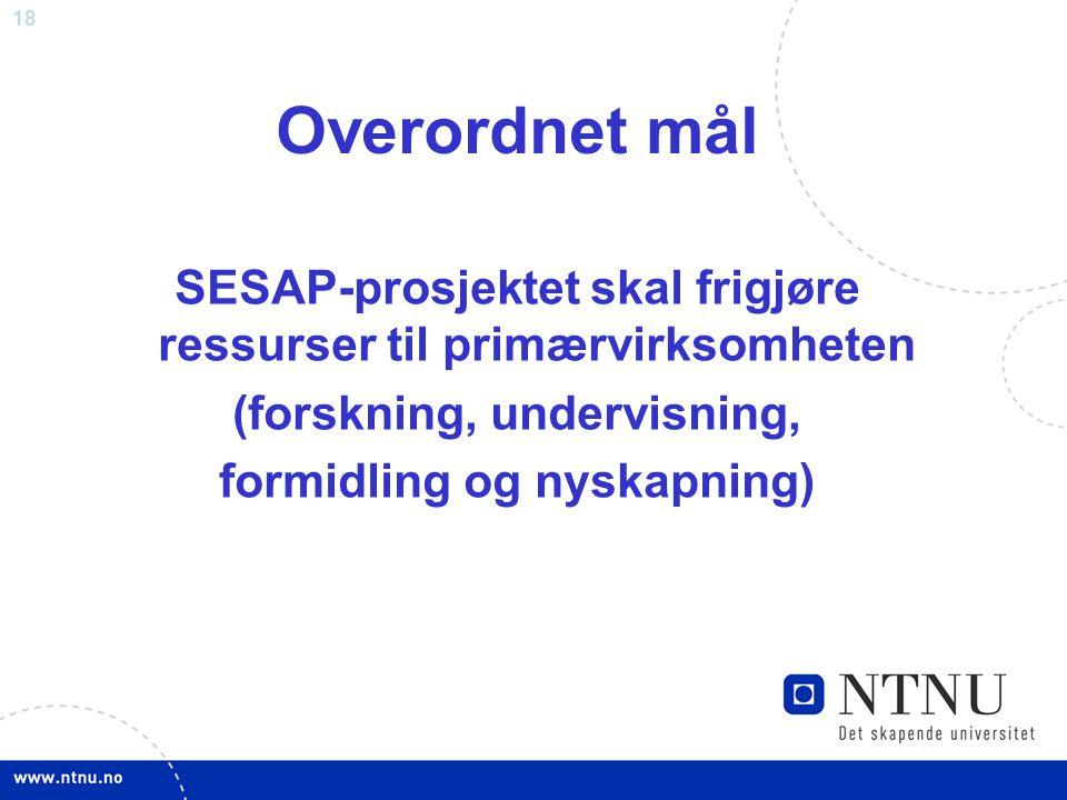 18 Overordnet mål SESAP-prosjektet skal frigjøre ressurser til primærvirksomheten (forskning, undervisning, formidling og nyskapning)