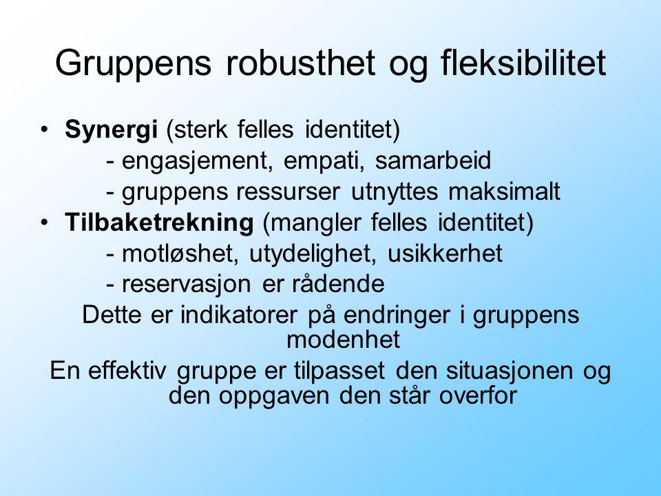 Gruppens robusthet og fleksibilitet Synergi (sterk felles identitet) - engasjement, empati, samarbeid - gruppens ressurser utnyttes maksimalt Tilbaket