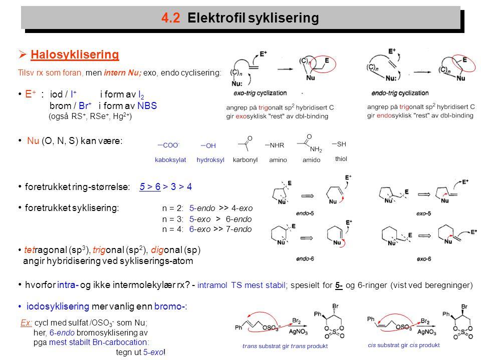 13 4.2 Elektrofil syklisering  Halosyklisering Tilsv rx som foran, men intern Nu; exo, endo cyclisering: E + : iod / I + i form av I 2 brom / Br + i