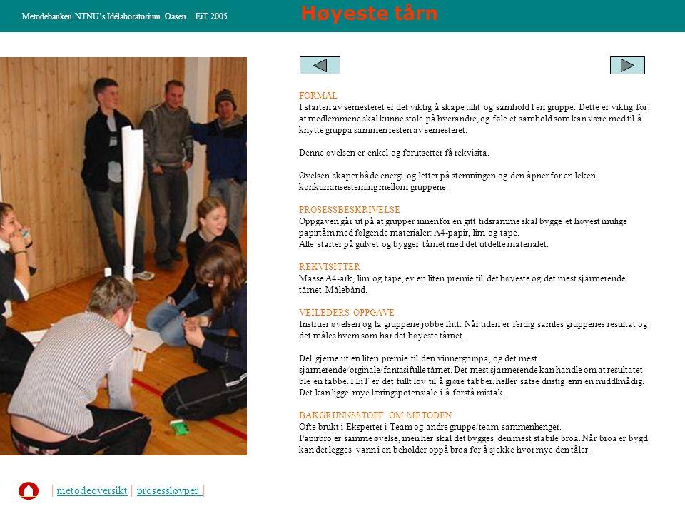 MÅL for dagen Metodebanken NTNU's Idélaboratorium Oasen   EiT 2005 FORMÅL Nå man kommer til et sted for å utrette noe sammen med andre, er det ikke til å unngå at deltagerne har forventninger, lyster og behov til dagen.