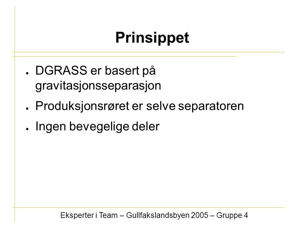 ● DGRASS er basert på gravitasjonsseparasjon ● Produksjonsrøret er selve separatoren ● Ingen bevegelige deler Eksperter i Team – Gullfakslandsbyen 2005 – Gruppe 4 Prinsippet