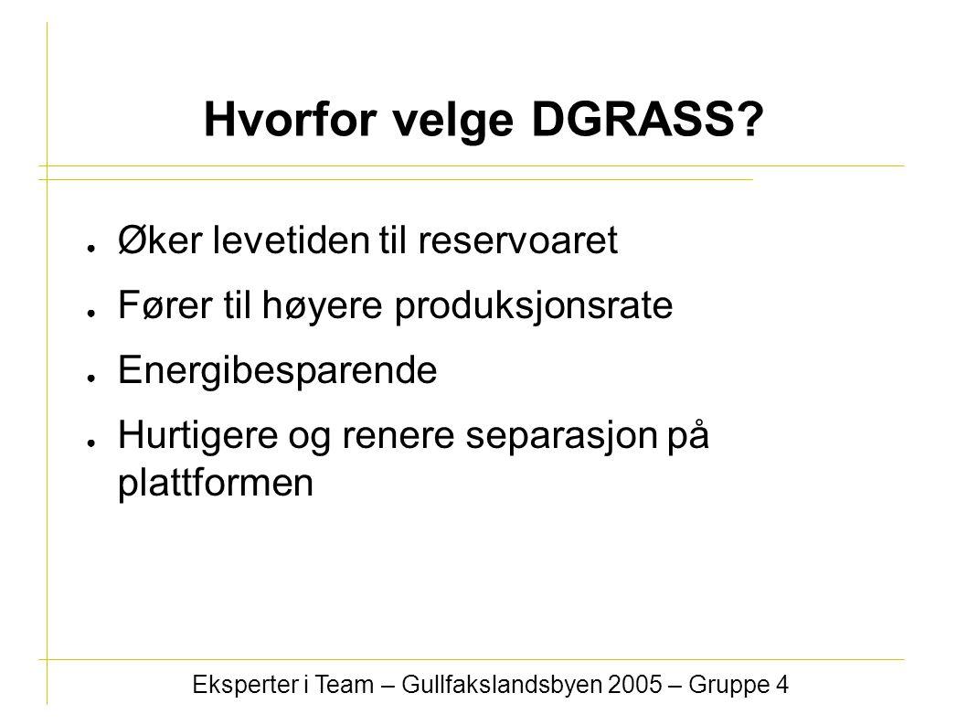 Eksperter i Team – Gullfakslandsbyen 2005 – Gruppe 4 Hvorfor velge DGRASS? ● Øker levetiden til reservoaret ● Fører til høyere produksjonsrate ● Energ