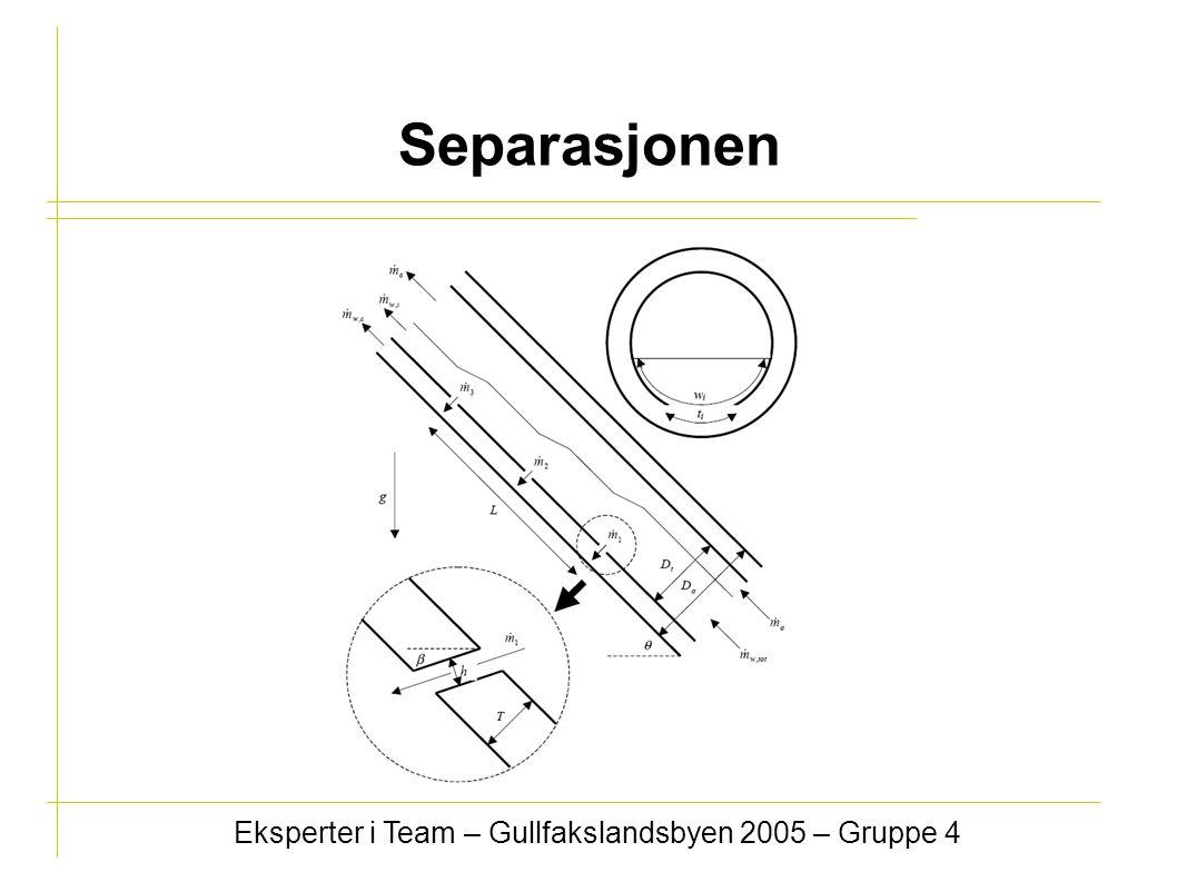 Eksperter i Team – Gullfakslandsbyen 2005 – Gruppe 4 Separasjonen