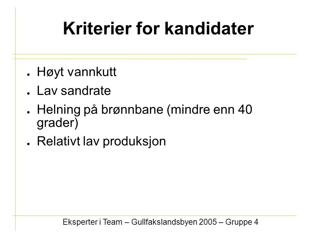 Kriterier for kandidater ● Høyt vannkutt ● Lav sandrate ● Helning på brønnbane (mindre enn 40 grader) ● Relativt lav produksjon Eksperter i Team – Gullfakslandsbyen 2005 – Gruppe 4