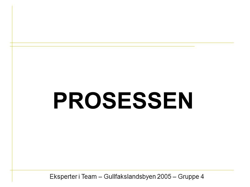 Eksperter i Team – Gullfakslandsbyen 2005 – Gruppe 4 PROSESSEN