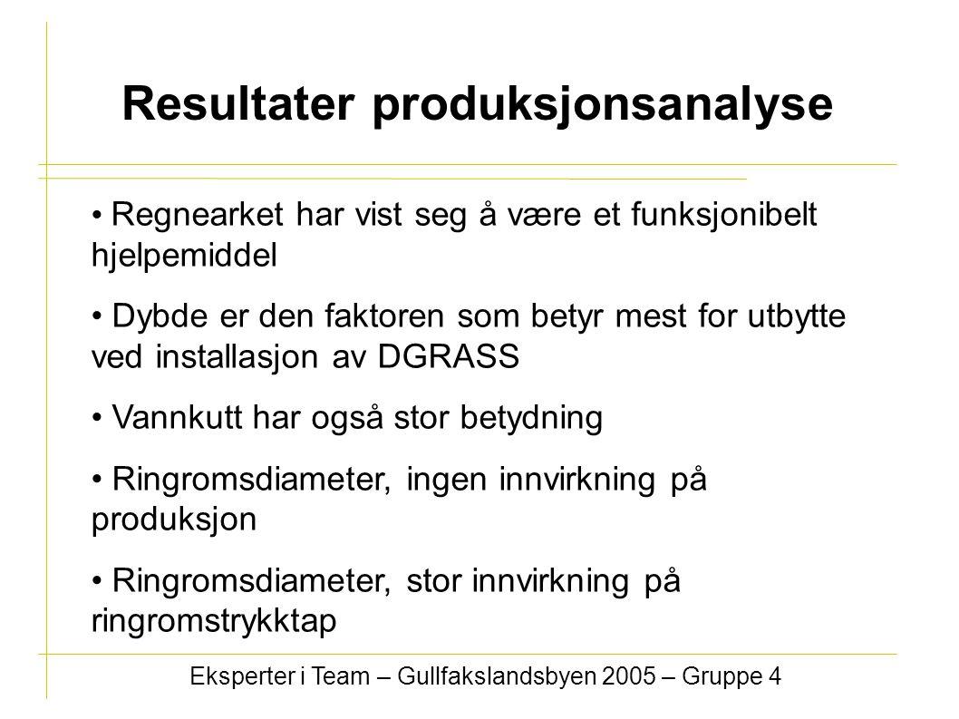 Resultater produksjonsanalyse Eksperter i Team – Gullfakslandsbyen 2005 – Gruppe 4 Regnearket har vist seg å være et funksjonibelt hjelpemiddel Dybde