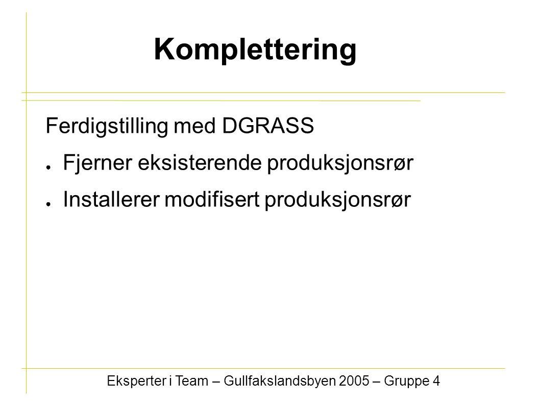 Komplettering Ferdigstilling med DGRASS ● Fjerner eksisterende produksjonsrør ● Installerer modifisert produksjonsrør Eksperter i Team – Gullfakslandsbyen 2005 – Gruppe 4
