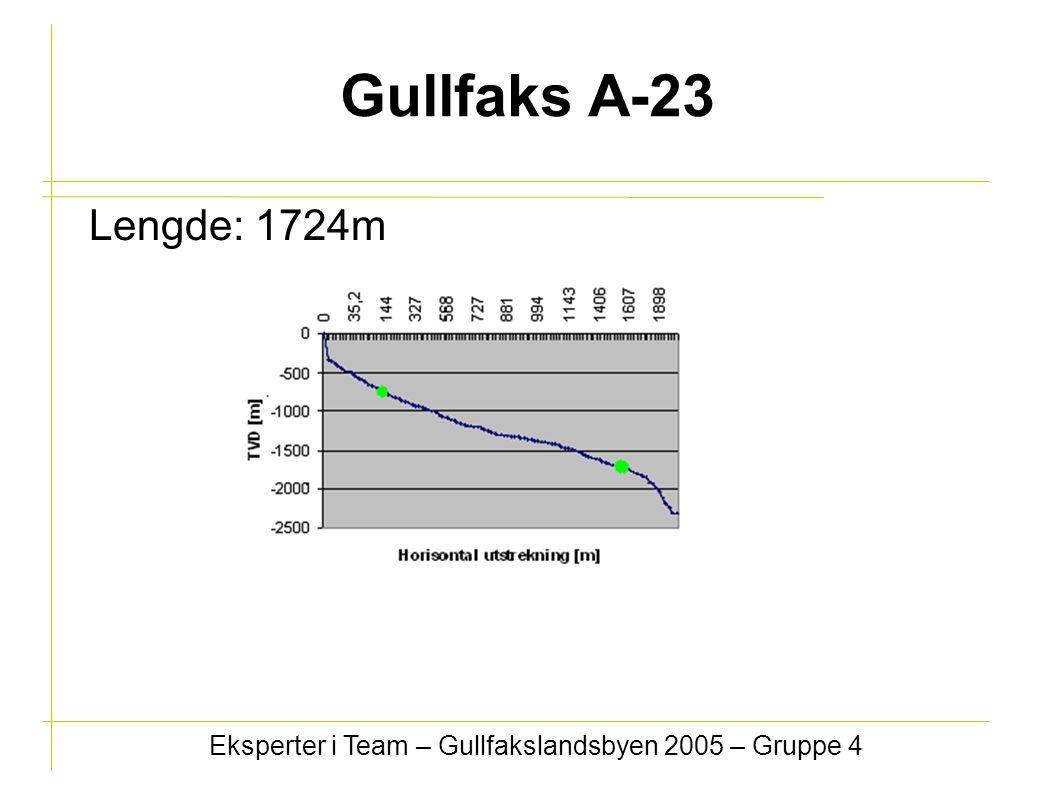 Gullfaks A-23 Lengde: 1724m Eksperter i Team – Gullfakslandsbyen 2005 – Gruppe 4