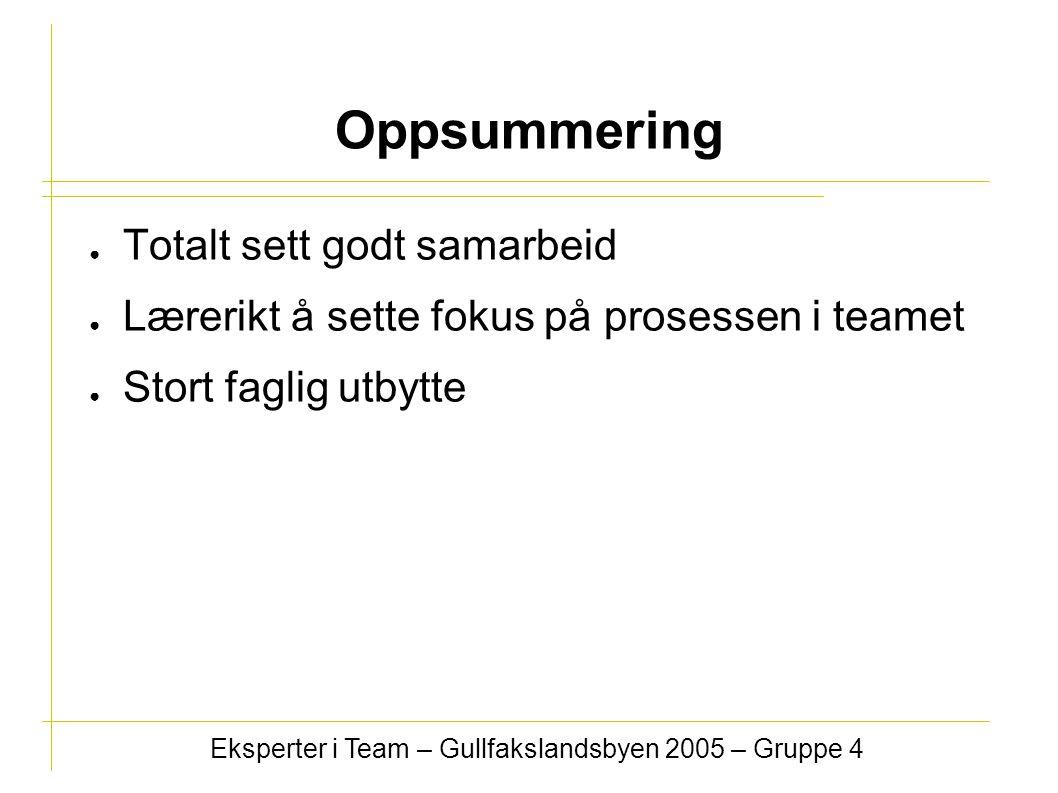 ● Totalt sett godt samarbeid ● Lærerikt å sette fokus på prosessen i teamet ● Stort faglig utbytte Eksperter i Team – Gullfakslandsbyen 2005 – Gruppe