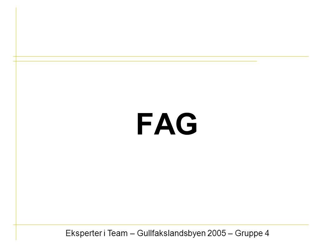 FAG Eksperter i Team – Gullfakslandsbyen 2005 – Gruppe 4