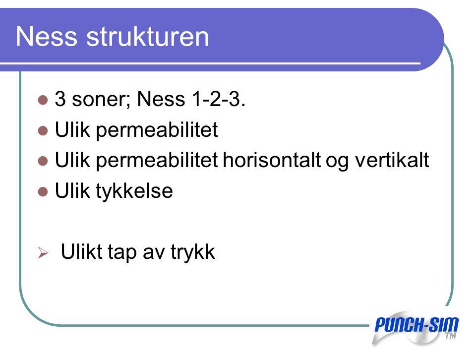 Pres = 313 bar P0 = Pres - ΔPres Ness 1 Ness 2 Swellpacker