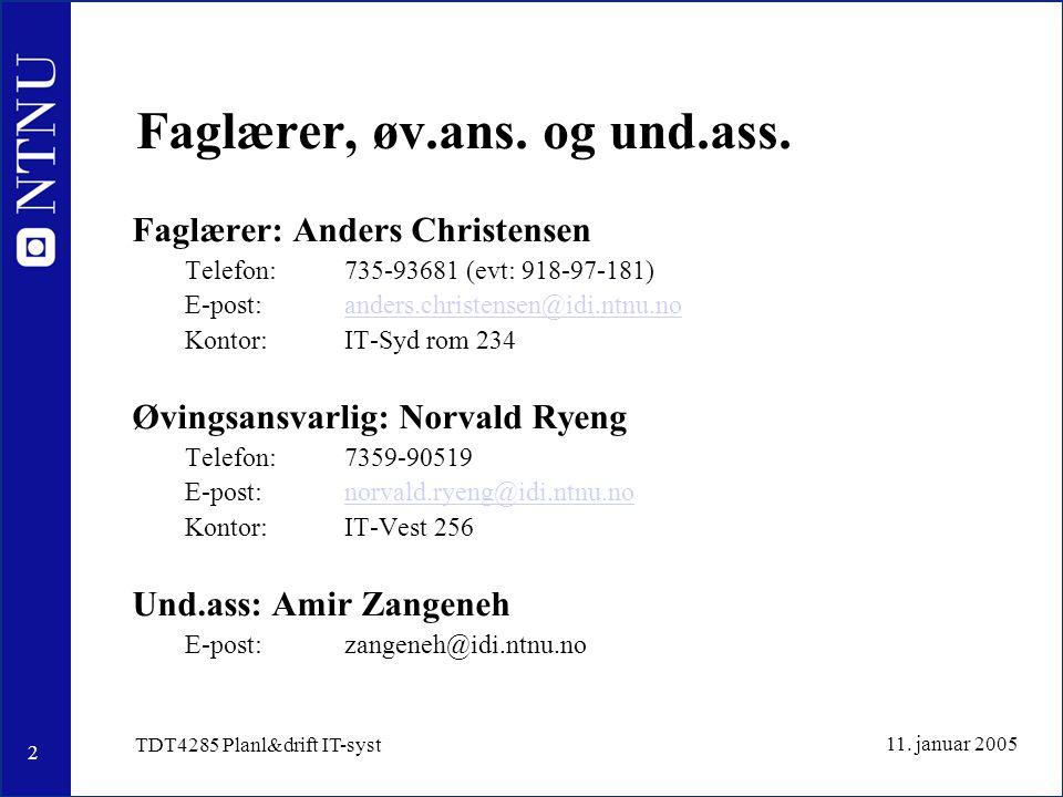 2 11. januar 2005 TDT4285 Planl&drift IT-syst Faglærer, øv.ans.