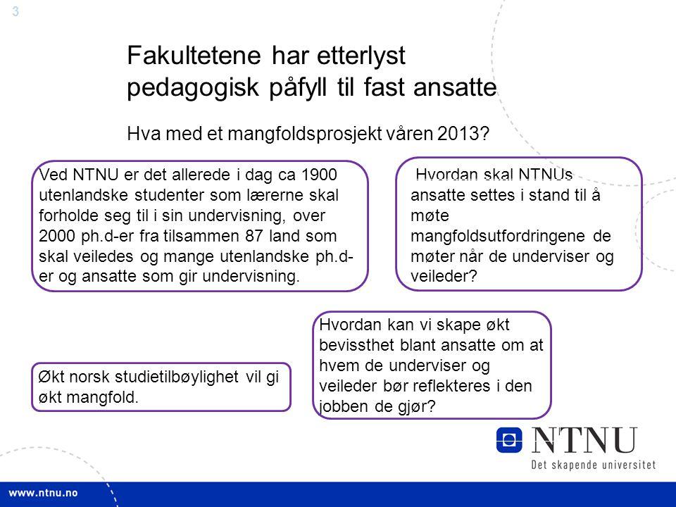 3 Fakultetene har etterlyst pedagogisk påfyll til fast ansatte Hva med et mangfoldsprosjekt våren 2013? Hvordan skal NTNUs ansatte settes i stand til