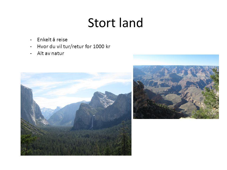 Stort land -Enkelt å reise -Hvor du vil tur/retur for 1000 kr -Alt av natur