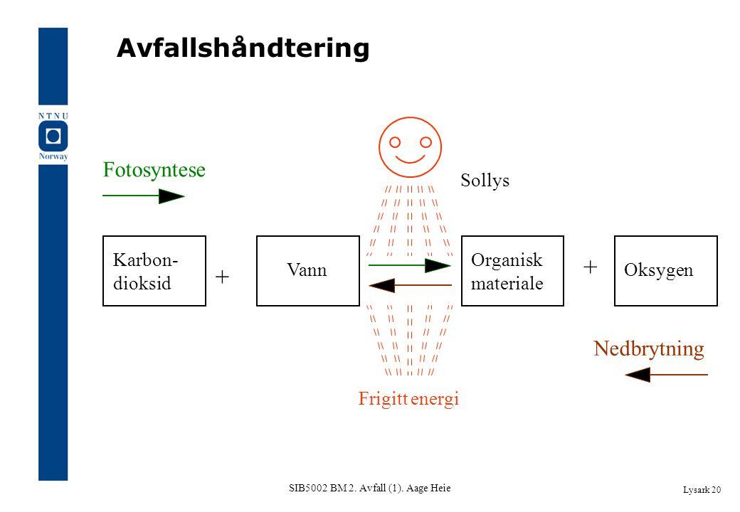SIB5002 BM 2. Avfall (1). Aage Heie Lysark 20 Avfallshåndtering Karbon- dioksid Oksygen Organisk materiale Vann + + Frigitt energi Sollys Fotosyntese