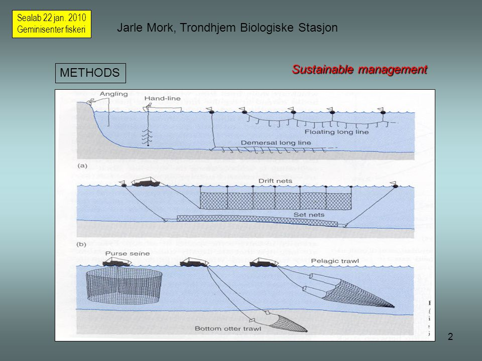 13 Jarle Mork, Trondhjem Biologiske Stasjon Sealab 22 jan.