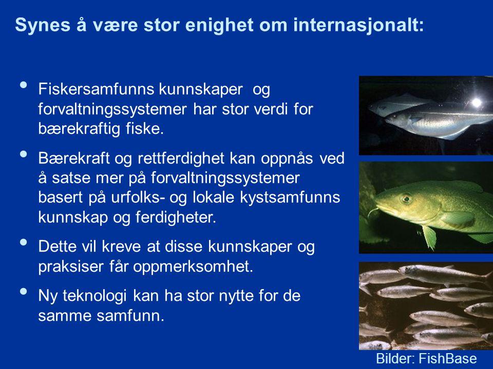 Fiskersamfunns kunnskaper og forvaltningssystemer har stor verdi for bærekraftig fiske.