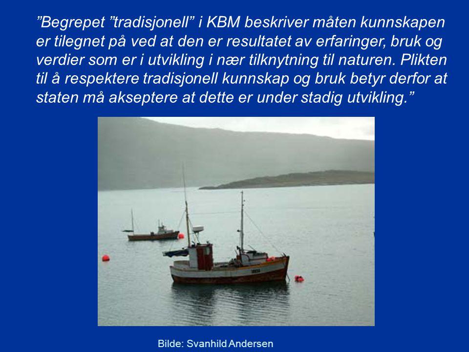 Begrepet tradisjonell i KBM beskriver måten kunnskapen er tilegnet på ved at den er resultatet av erfaringer, bruk og verdier som er i utvikling i nær tilknytning til naturen.