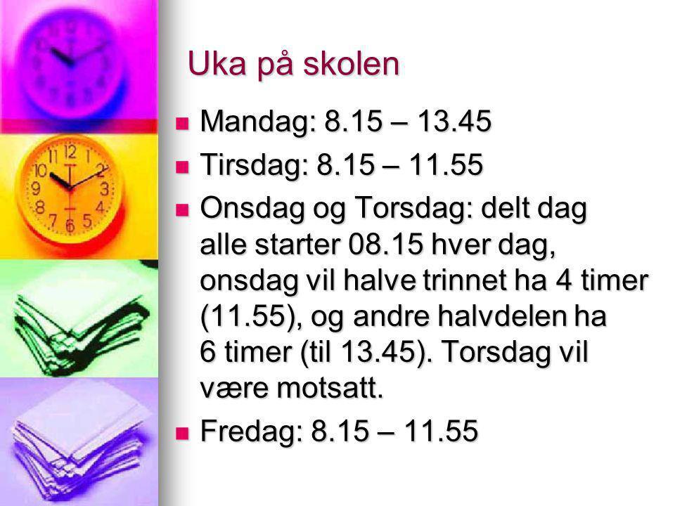 Forventninger til foreldre Sørge for at barna møter til rett tid (08.15 !!!) Sørge for at barna møter til rett tid (08.15 !!!) Følge opp meldemappe –