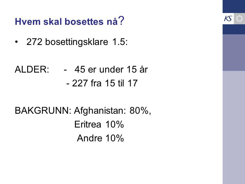 Hvem skal bosettes nå ? 272 bosettingsklare 1.5: ALDER: - 45 er under 15 år - 227 fra 15 til 17 BAKGRUNN: Afghanistan: 80%, Eritrea 10% Andre 10%