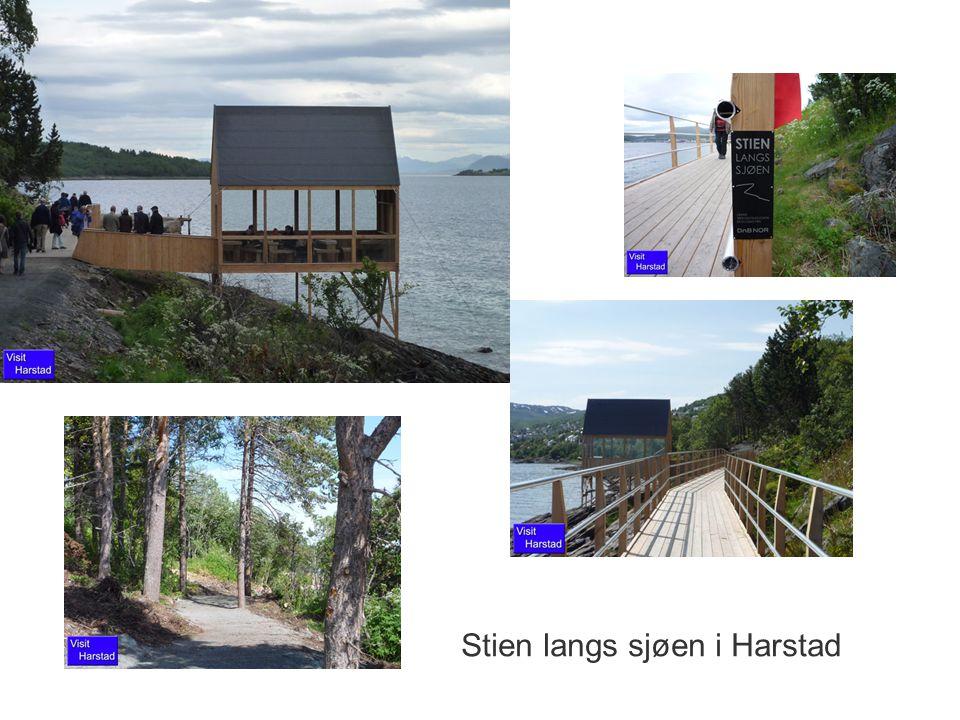 Stien langs sjøen i Harstad