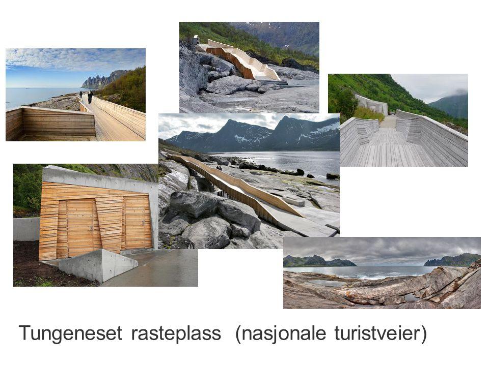Tungeneset rasteplass (nasjonale turistveier)