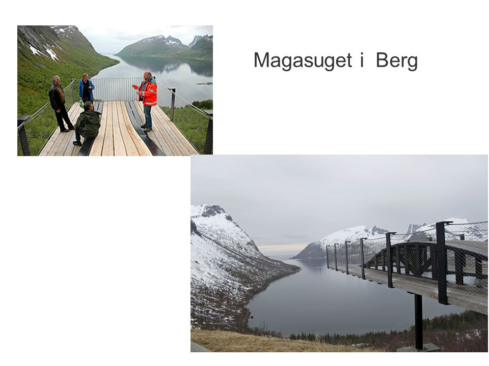 Magasuget i Berg