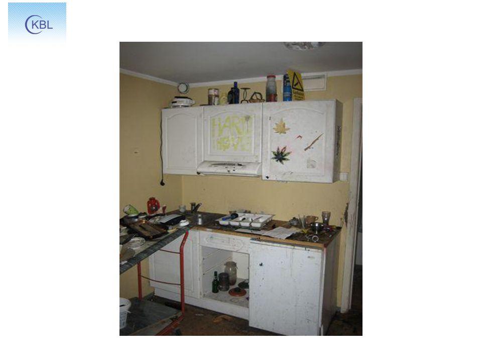 Skader på boligen Om å få leietaker til å ta vare på boligen Konsekvenser for leietaker Nekte fornying.