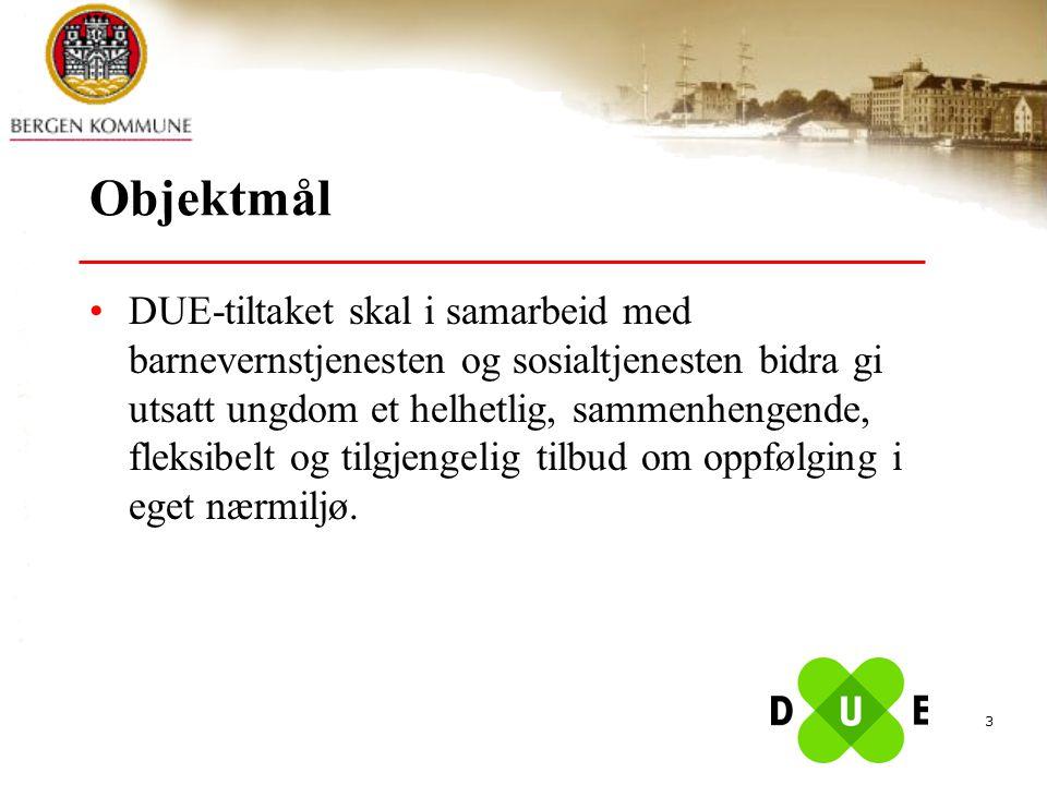 3 Objektmål DUE-tiltaket skal i samarbeid med barnevernstjenesten og sosialtjenesten bidra gi utsatt ungdom et helhetlig, sammenhengende, fleksibelt o