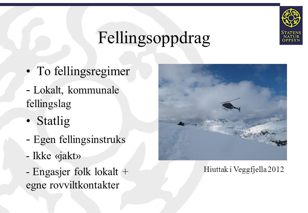 Fellingsoppdrag To fellingsregimer - Lokalt, kommunale fellingslag Statlig - Egen fellingsinstruks - Ikke «jakt» - Engasjer folk lokalt + egne rovvilt