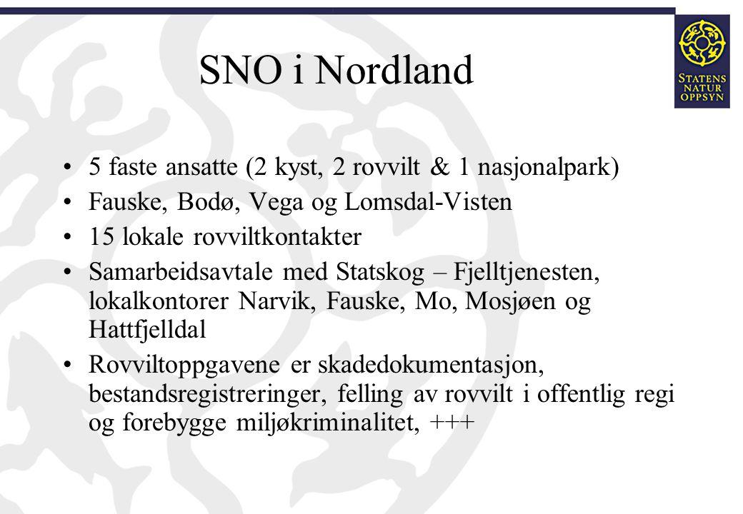 SNO i Nordland 5 faste ansatte (2 kyst, 2 rovvilt & 1 nasjonalpark) Fauske, Bodø, Vega og Lomsdal-Visten 15 lokale rovviltkontakter Samarbeidsavtale m