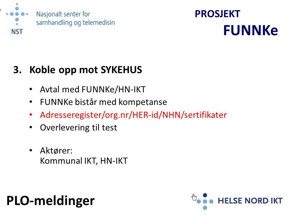 Fullskala-test av PLO-meldinger FUNNKe bistår med kompetanse Overlevering til test mot Produksjonsbase Aktører: Sykehus, Kommune (PLO), HN-IKT PROSJEKT FUNNKe 4.