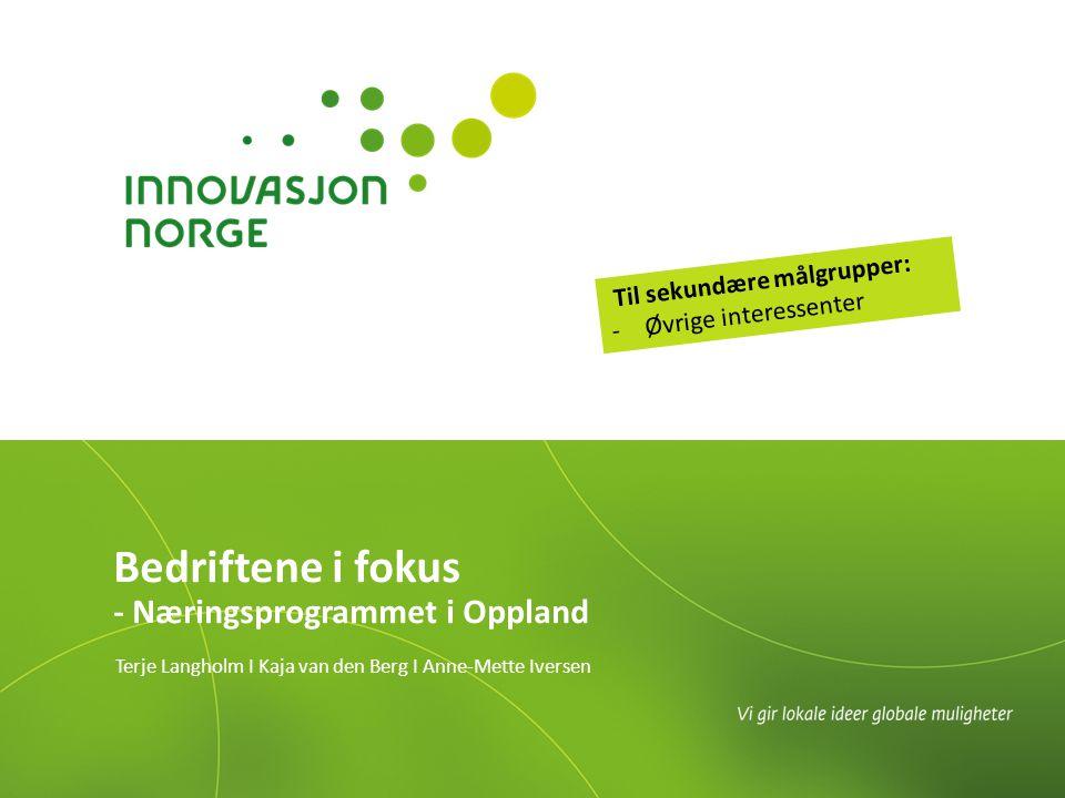 Bedriftene i fokus - Næringsprogrammet i Oppland Terje Langholm I Kaja van den Berg I Anne-Mette Iversen Til sekundære målgrupper: -Øvrige interessenter
