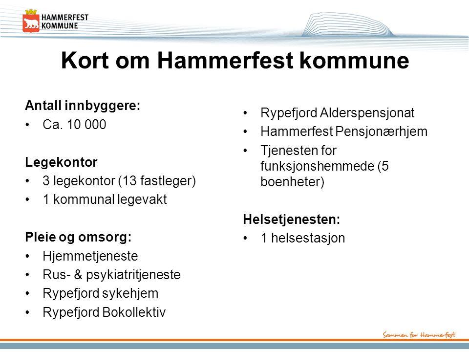 Kort om Hammerfest kommune Antall innbyggere: Ca. 10 000 Legekontor 3 legekontor (13 fastleger) 1 kommunal legevakt Pleie og omsorg: Hjemmetjeneste Ru