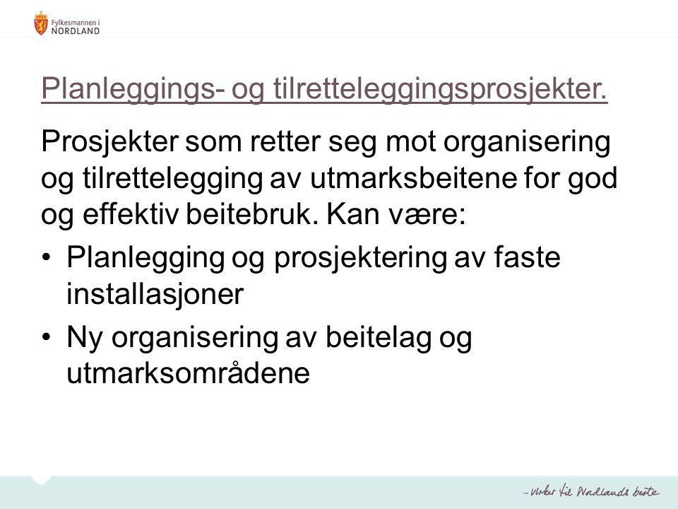 Planleggings- og tilretteleggingsprosjekter.