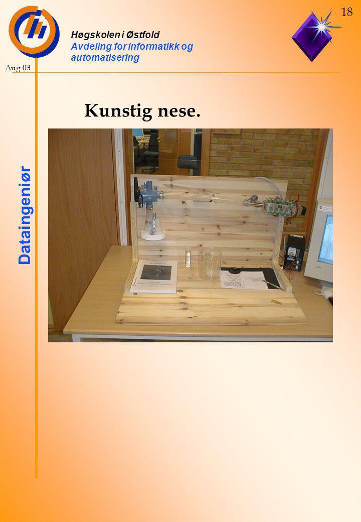 Høgskolen i Østfold Avdeling for informatikk og automatisering Dataingeniør 18 Aug 03 Kunstig nese.