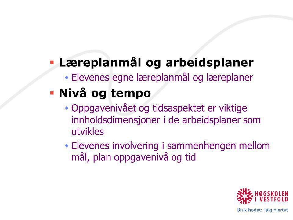  Læreplanmål og arbeidsplaner  Elevenes egne læreplanmål og læreplaner  Nivå og tempo  Oppgavenivået og tidsaspektet er viktige innholdsdimensjone