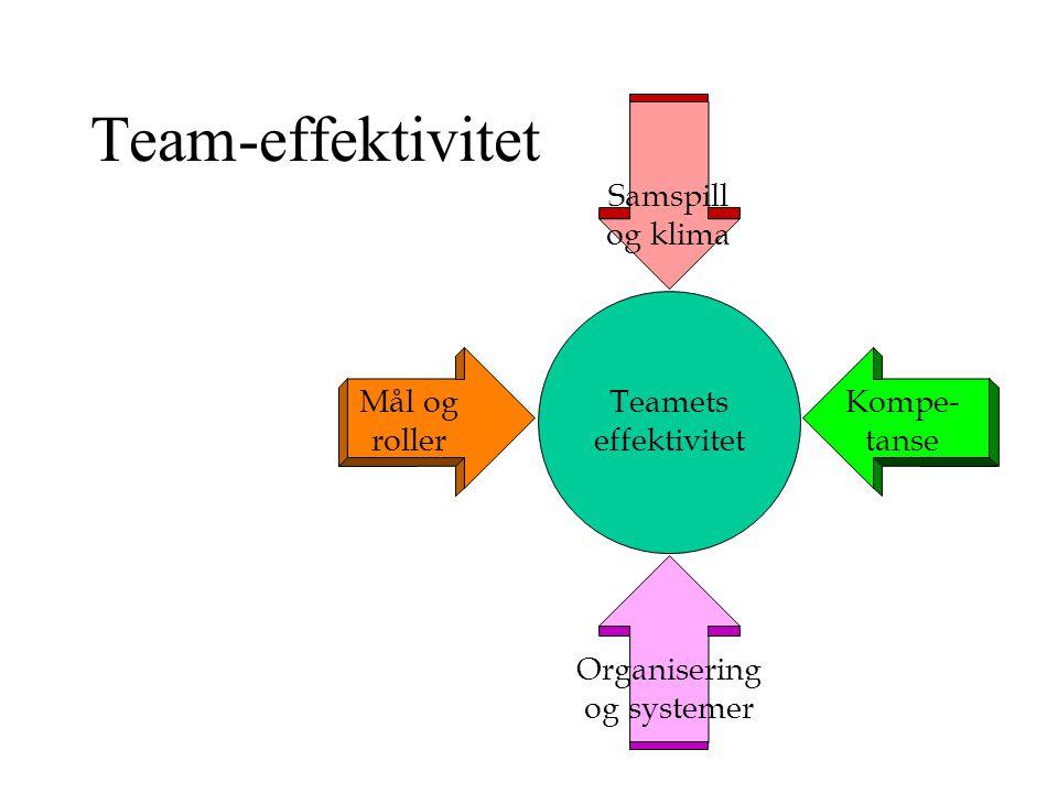 Belbin - hoveddimensjonene Framdrift Utvikling Vurdering Samspill