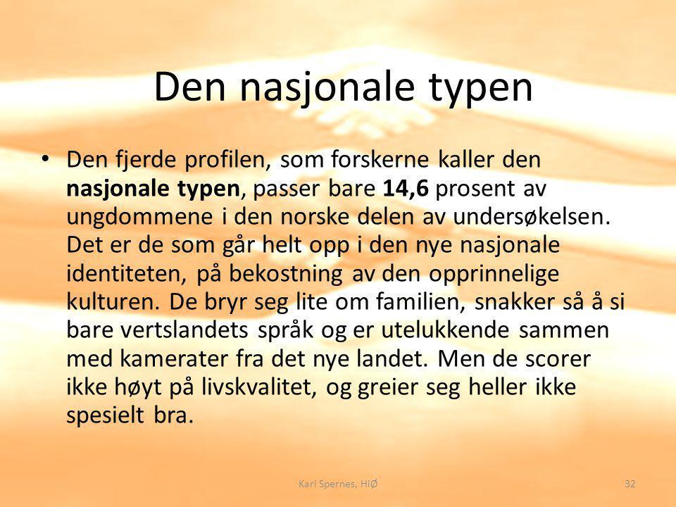 Den nasjonale typen Den fjerde profilen, som forskerne kaller den nasjonale typen, passer bare 14,6 prosent av ungdommene i den norske delen av undersøkelsen.