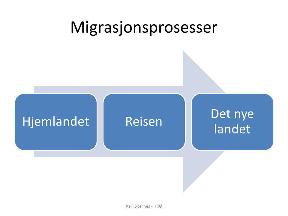Migrasjonsprosesser HjemlandetReisen Det nye landet Kari Spernes - HiØ