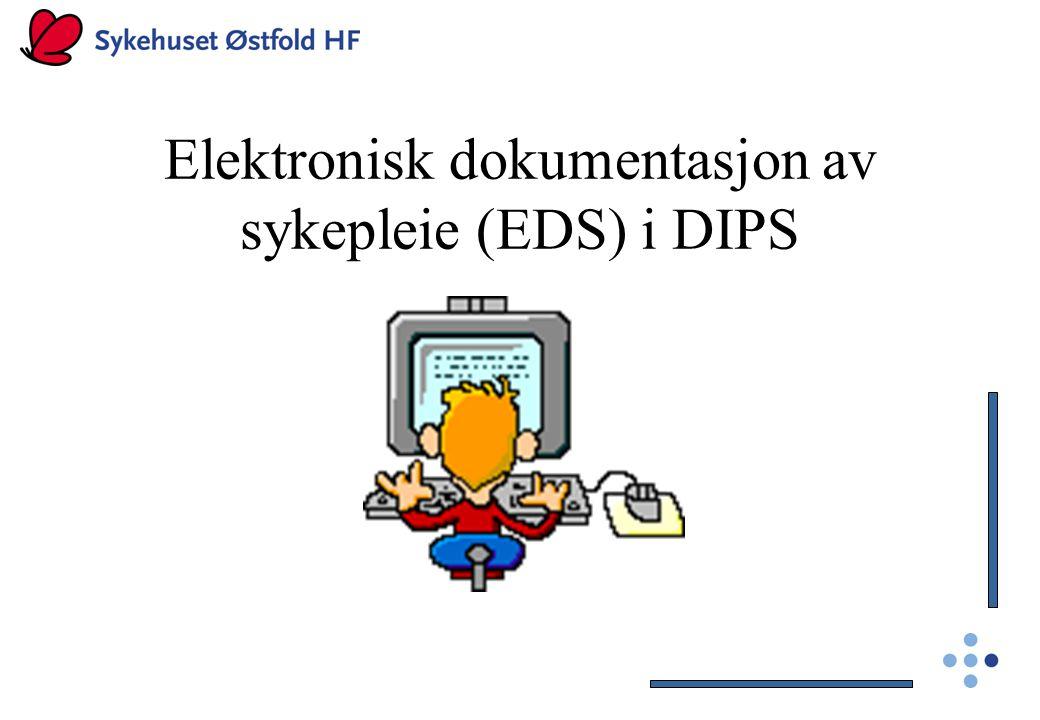 Elektronisk dokumentasjon av sykepleie (EDS) i DIPS