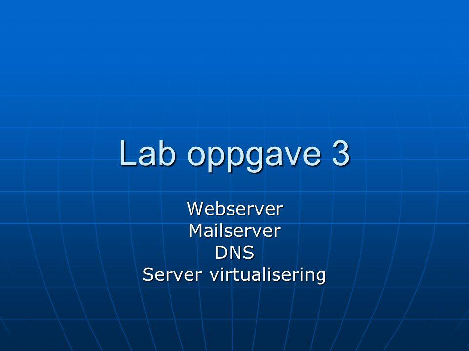 Lab oppgave 3 WebserverMailserverDNS Server virtualisering
