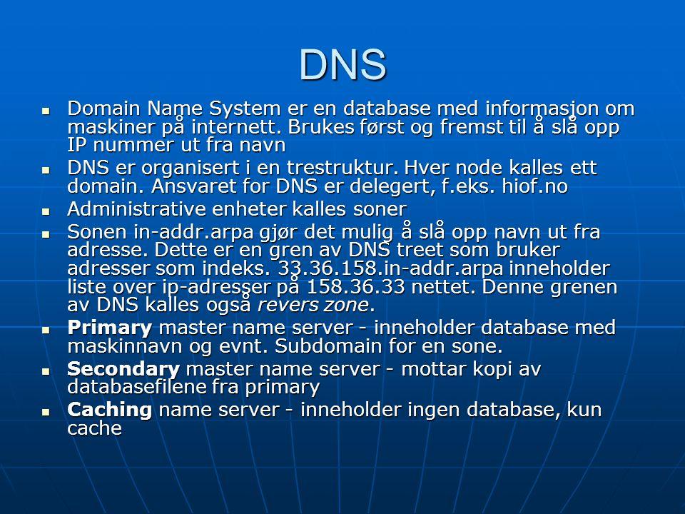 DNS Domain Name System er en database med informasjon om maskiner på internett.