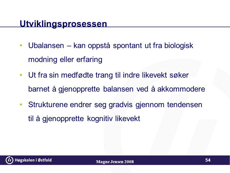 Magne Jensen 2008 53 Likevekt Når barnet møter nye inntrykk som han/hun ikke forstår, dvs. ikke får til å stemme med sine allerede etablerte skjemaer