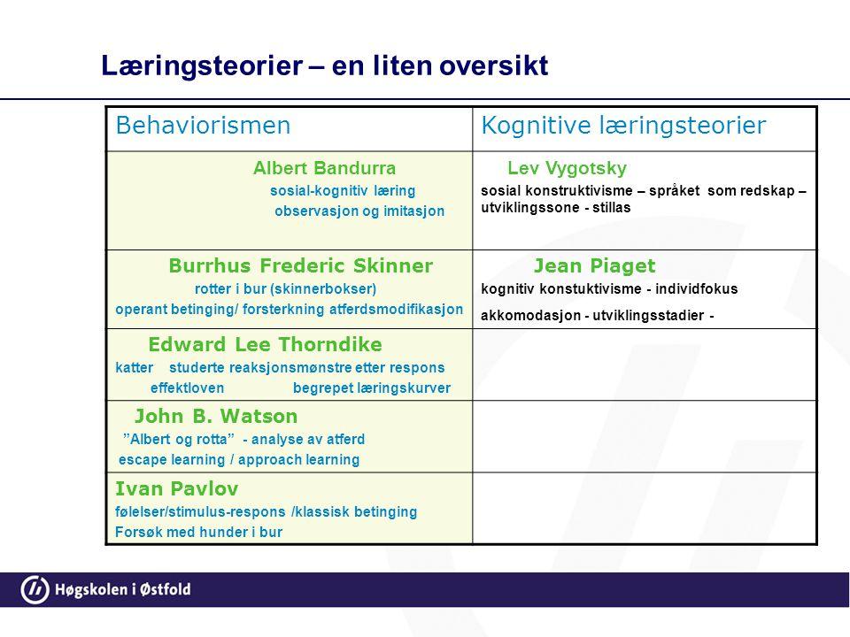 80 Konsekvenser for pedagogisk praksis Legge vekt på at barnet får tilpassede utfordringer, noe overkommelig å strekke seg etter Se at barn lærer gjen