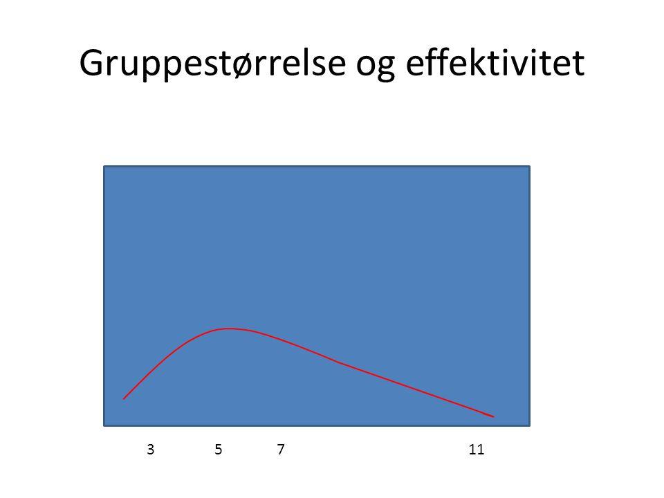 Gruppestørrelse og effektivitet 35711