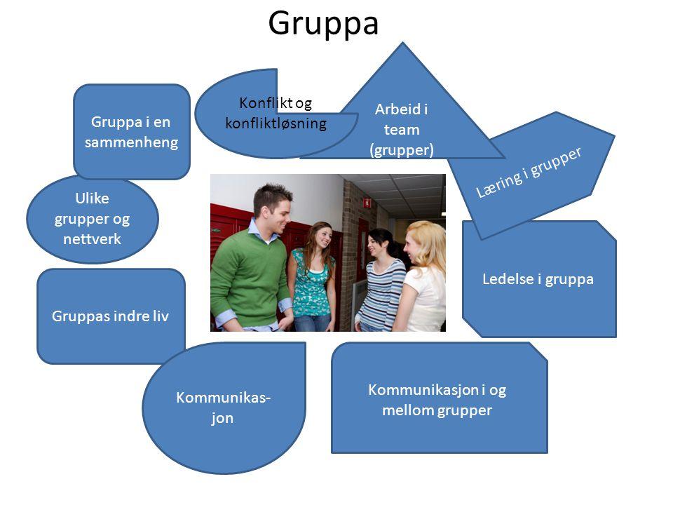 Gruppa Ulike grupper og nettverk Gruppas indre liv Kommunikas- jon Kommunikasjon i og mellom grupper Ledelse i gruppa Læring i grupper Arbeid i team (
