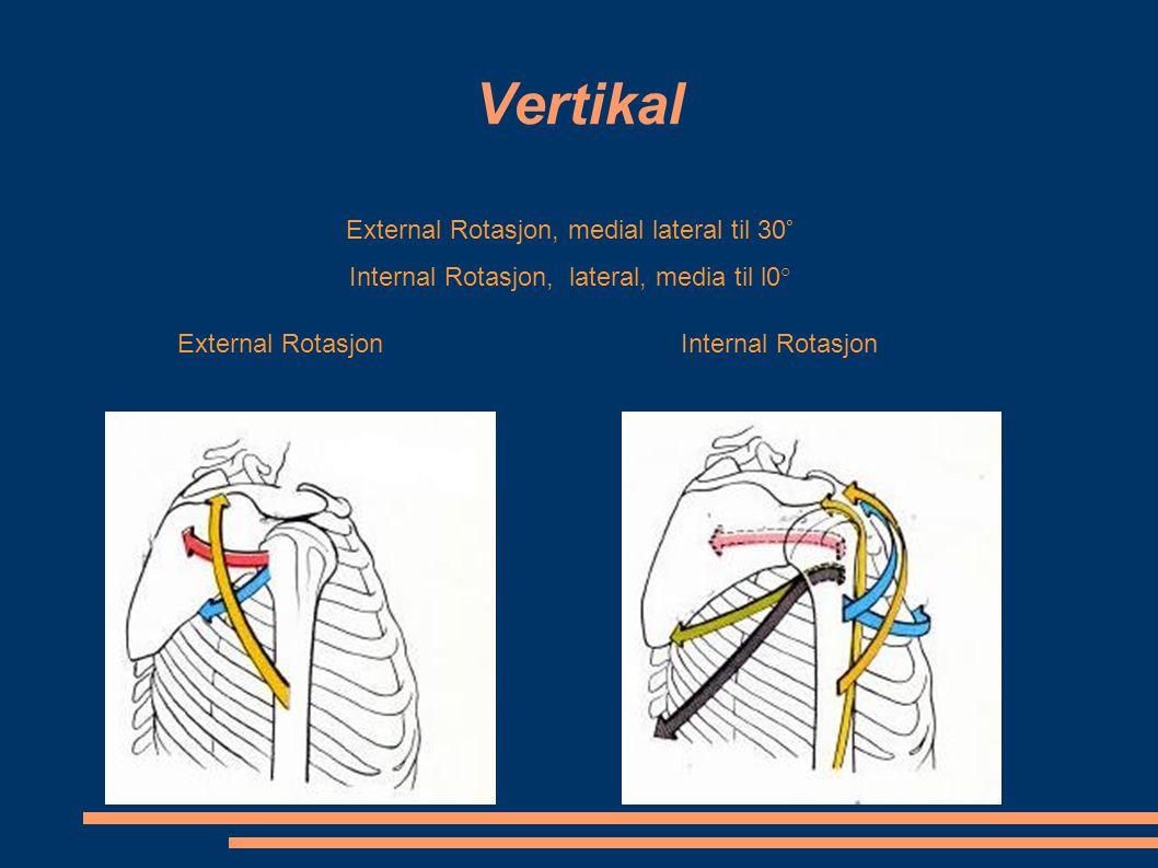 Vertikal External Rotasjon, medial lateral til 30° Internal Rotasjon, lateral, media til l0° External RotasjonInternal Rotasjon