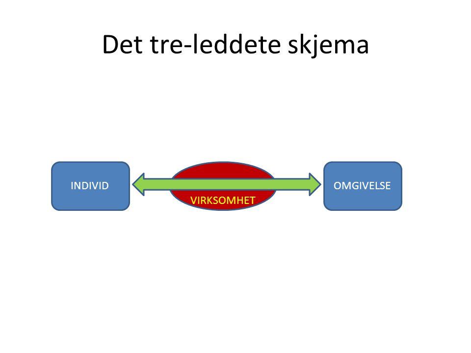 Det tre-leddete skjema INDIVID VIRKSOMHET OMGIVELSE