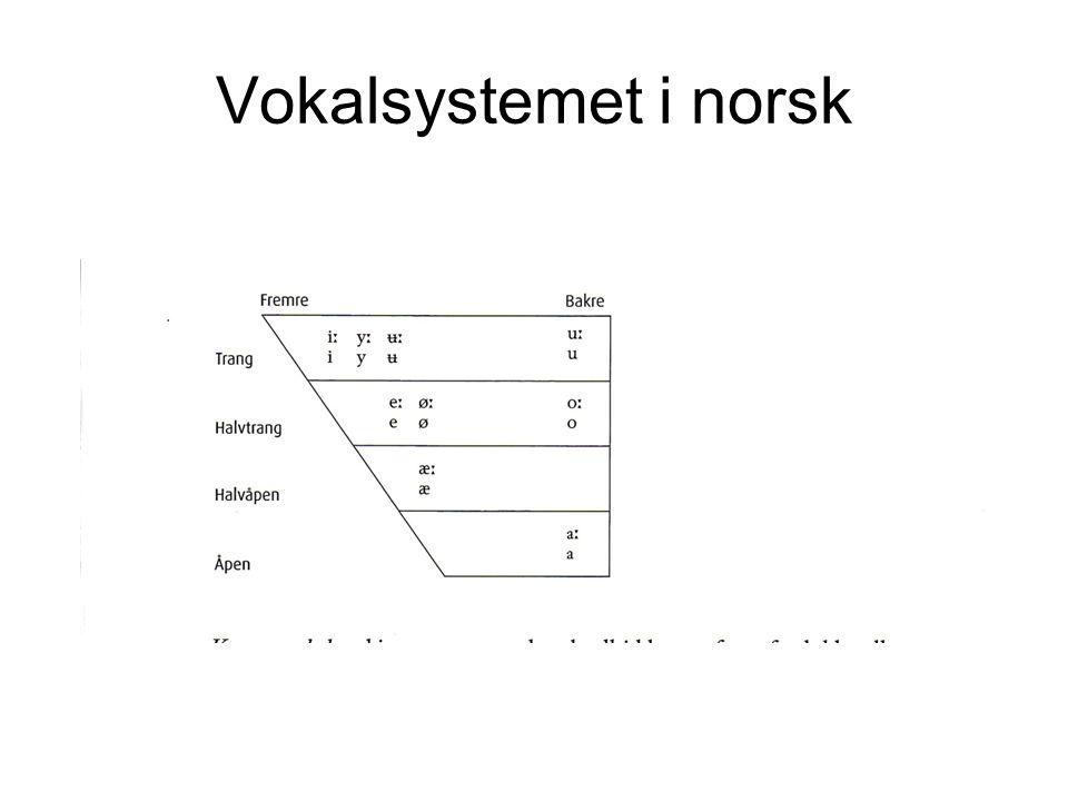 Vokalsystemet i norsk